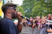 Idris Elba & The Bullitts   The Big Chill 2011